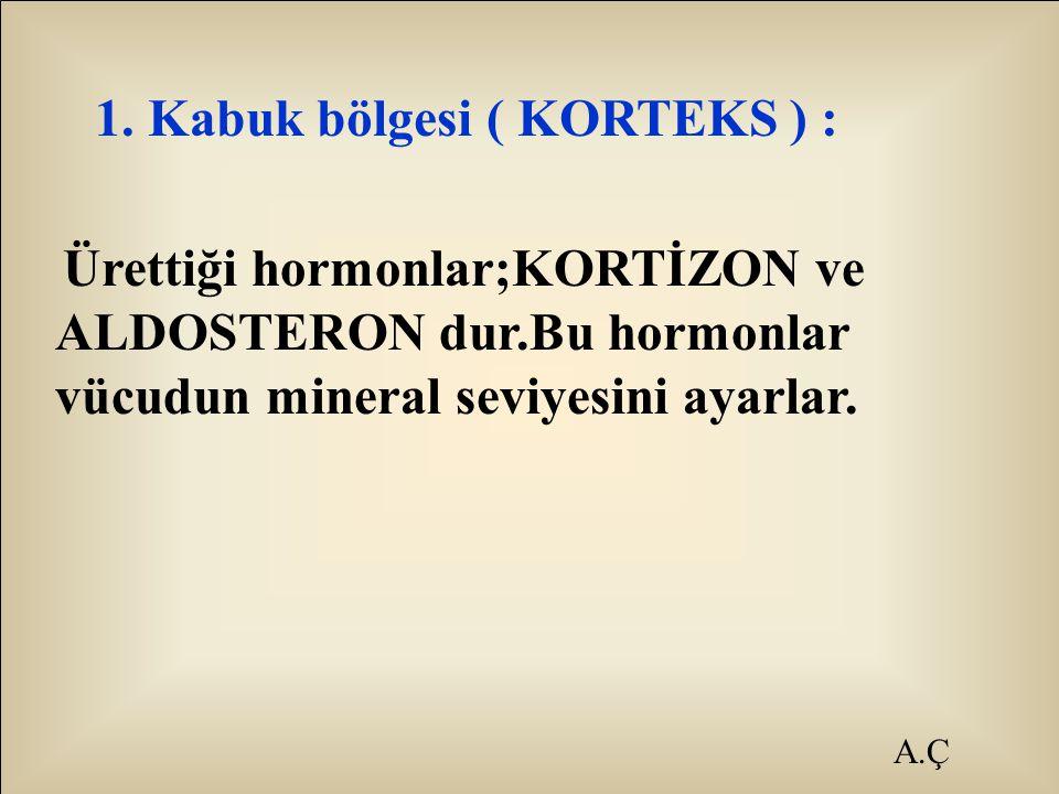 A.Ç 1. Kabuk bölgesi ( KORTEKS ) : Ürettiği hormonlar;KORTİZON ve ALDOSTERON dur.Bu hormonlar vücudun mineral seviyesini ayarlar.