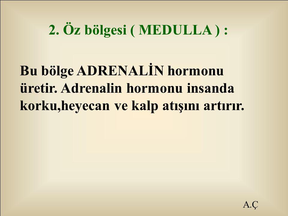 A.Ç 2. Öz bölgesi ( MEDULLA ) : Bu bölge ADRENALİN hormonu üretir. Adrenalin hormonu insanda korku,heyecan ve kalp atışını artırır.