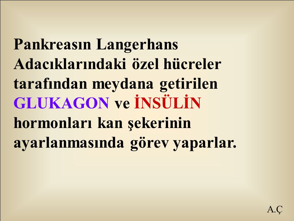A.Ç Pankreasın Langerhans Adacıklarındaki özel hücreler tarafından meydana getirilen GLUKAGON ve İNSÜLİN hormonları kan şekerinin ayarlanmasında görev