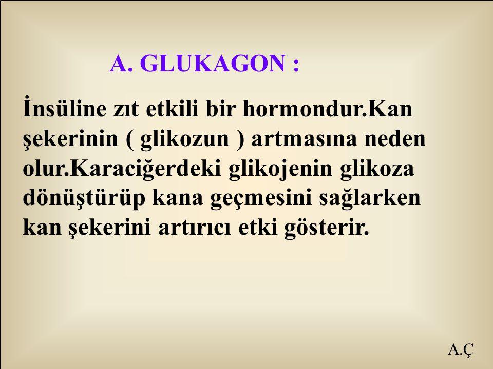 A.Ç A. GLUKAGON : İnsüline zıt etkili bir hormondur.Kan şekerinin ( glikozun ) artmasına neden olur.Karaciğerdeki glikojenin glikoza dönüştürüp kana g