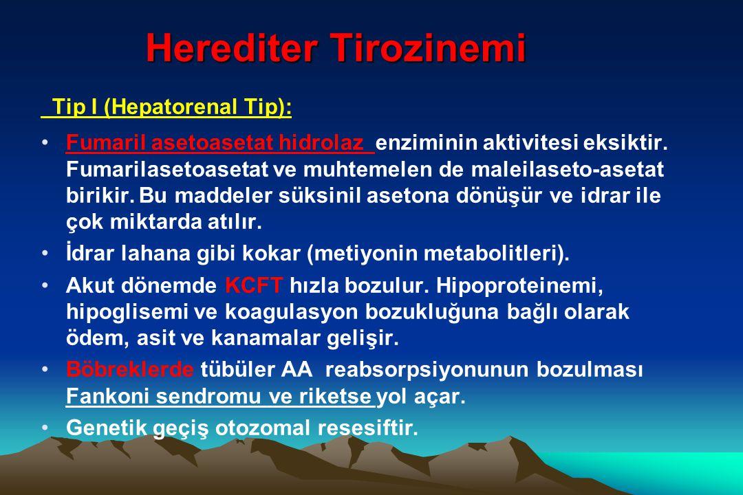 Herediter Tirozinemi Tip I (Hepatorenal Tip): Fumaril asetoasetat hidrolaz enziminin aktivitesi eksiktir. Fumarilasetoasetat ve muhtemelen de maleilas