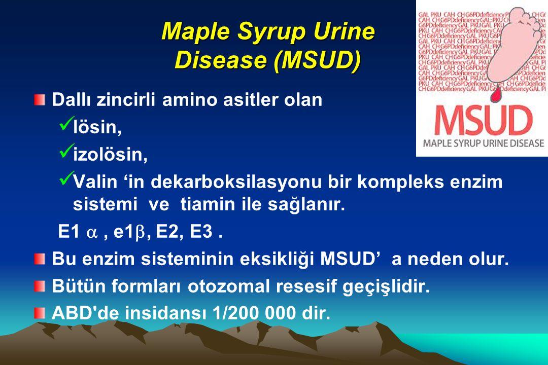 Maple Syrup Urine Disease (MSUD) Dallı zincirli amino asitler olan lösin, izolösin, Valin 'in dekarboksilasyonu bir kompleks enzim sistemi ve tiamin i