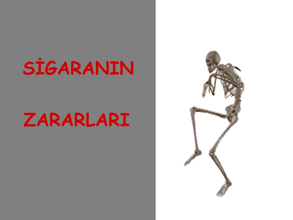 SİGARANIN ZARARLARI