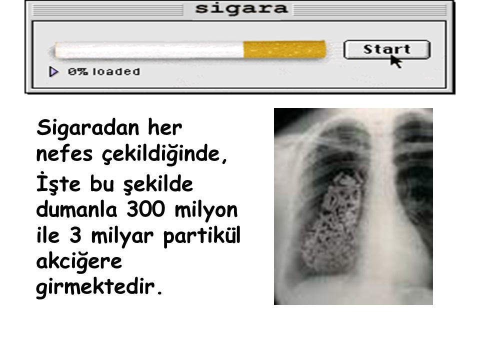 ve Ölüm Sigara içenlerin kanserden ölüm oranı, içmeyenlere göre 15 ile 25 kat fazladır. Sigara Kanser