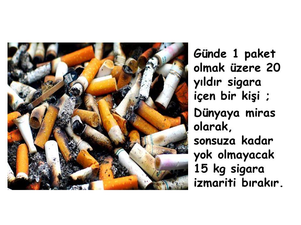 Ülkemizde çıkan orman yangınlarının; % 50 sine sigara izmaritleri neden olmaktadır. SİGARA İNSAN KATİLİ OLDUĞU KADAR ORMANLARIN DA EN BÜYÜK DÜŞMANIDIR