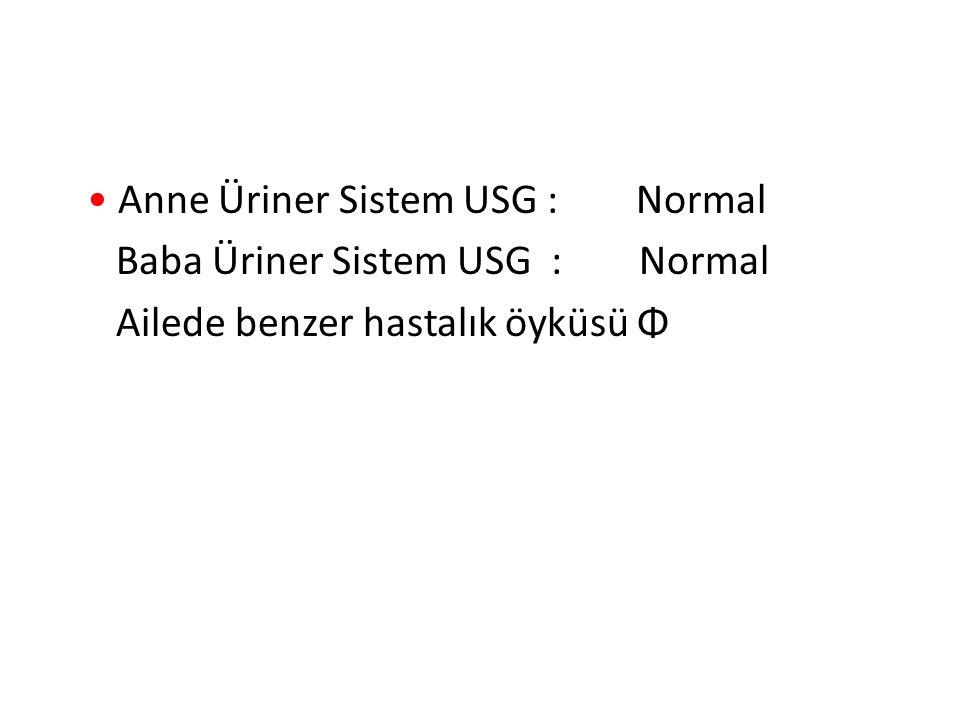 Anne Üriner Sistem USG : Normal Baba Üriner Sistem USG : Normal Ailede benzer hastalık öyküsü Φ