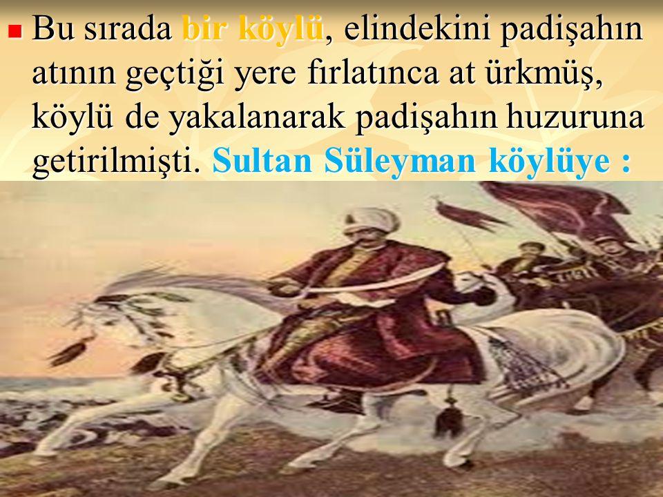 Bu sırada bir köylü, elindekini padişahın atının geçtiği yere fırlatınca at ürkmüş, köylü de yakalanarak padişahın huzuruna getirilmişti. Sultan Süley