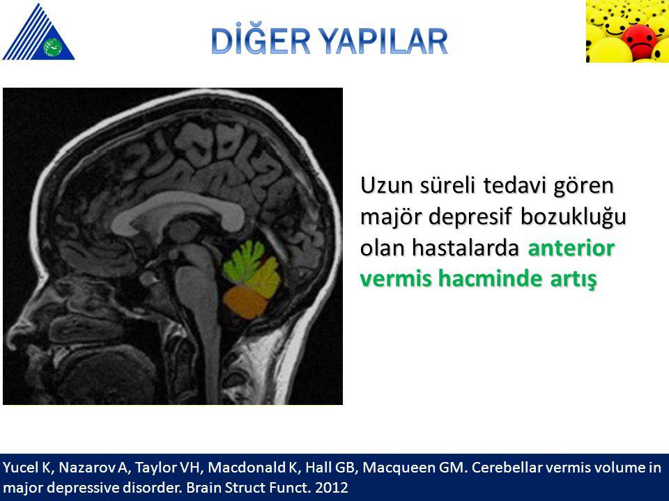 Yucel K, Nazarov A, Taylor VH, Macdonald K, Hall GB, Macqueen GM. Cerebellar vermis volume in major depressive disorder. Brain Struct Funct. 2012 Uzun