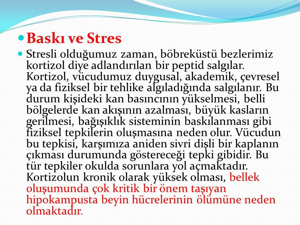 Stres altında kısa süreli ve uzun süreli belleğin işlevleri sınırlandırılmaktadır.