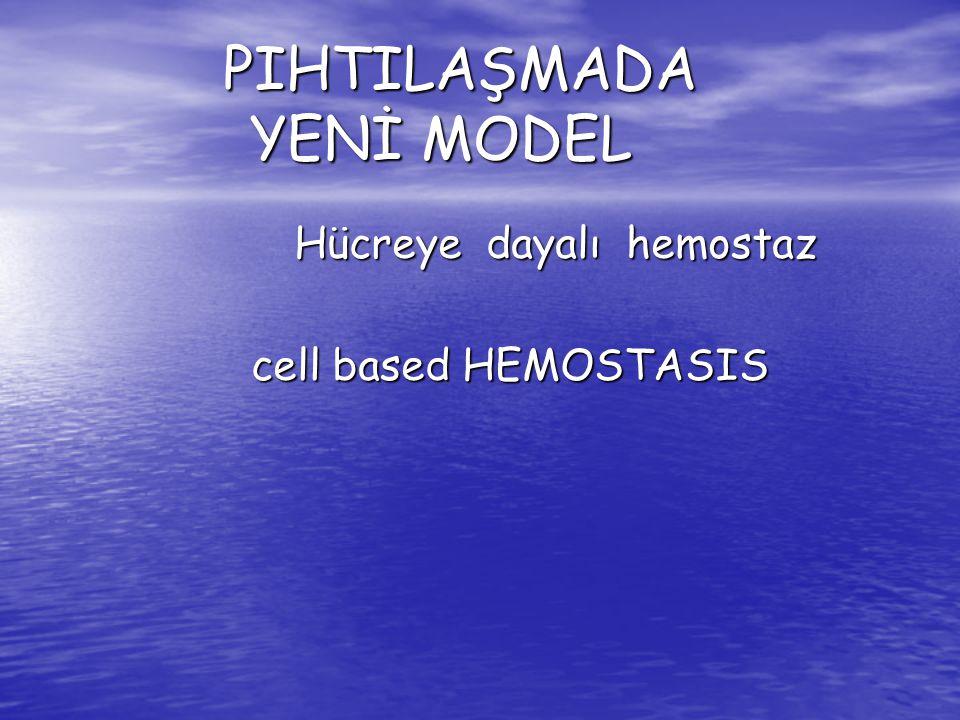PIHTILAŞMADA YENİ MODEL PIHTILAŞMADA YENİ MODEL Hücreye dayalı hemostaz Hücreye dayalı hemostaz cell based HEMOSTASIS