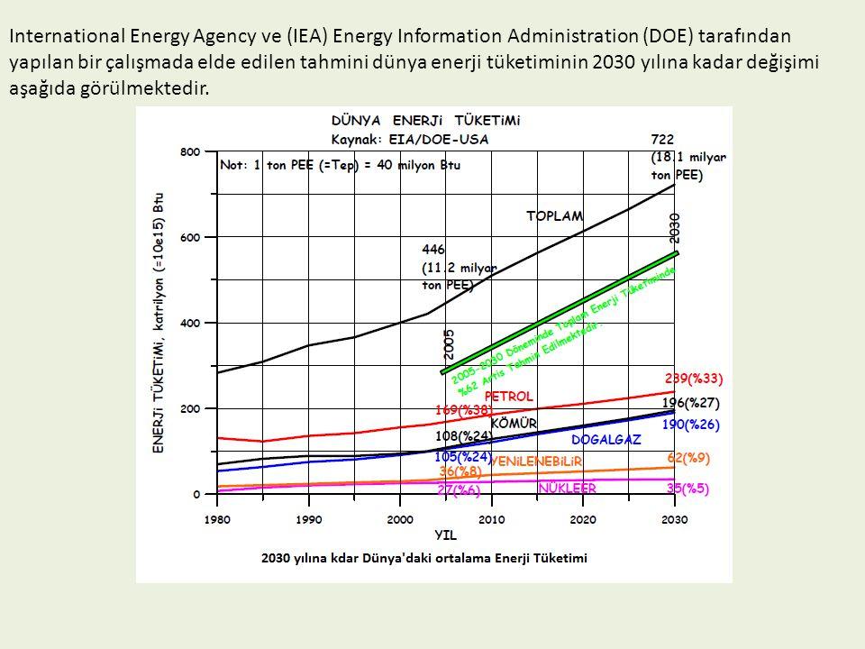 International Energy Agency ve (IEA) Energy Information Administration (DOE) tarafından yapılan bir çalışmada elde edilen tahmini dünya enerji tüketiminin 2030 yılına kadar değişimi aşağıda görülmektedir.