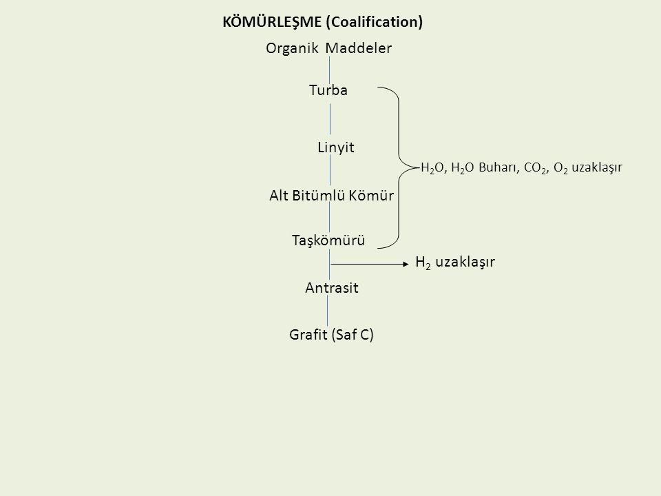 KÖMÜRLEŞME (Coalification) Organik Maddeler Turba Linyit Alt Bitümlü Kömür Taşkömürü Antrasit Grafit (Saf C) H 2 O, H 2 O Buharı, CO 2, O 2 uzaklaşır H 2 uzaklaşır