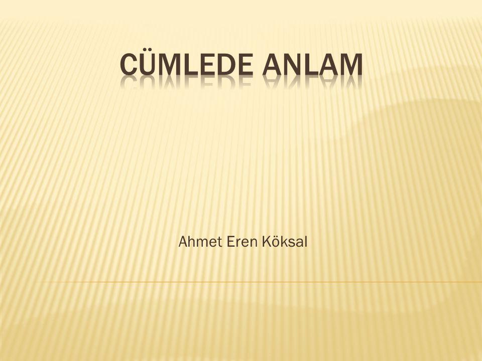 Ahmet Eren Köksal