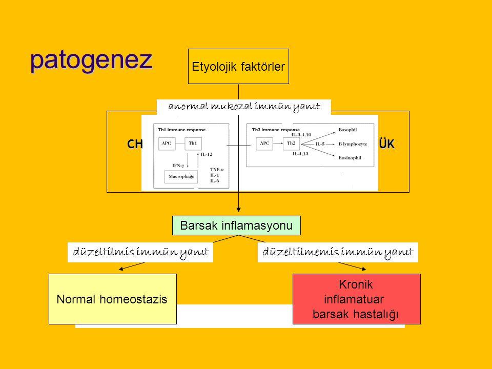 Patogenez İBH genetik yatkınlığı olan bir kişide; Geçirgenliği artmış olan barsak epitelinden emilen, çeşitli antijenlere karşı uyanan immün yanıt, Çeşitli kaskadlardan geçer, Çok sayıda mekanizmayı devreye sokarak amplifiye olur.