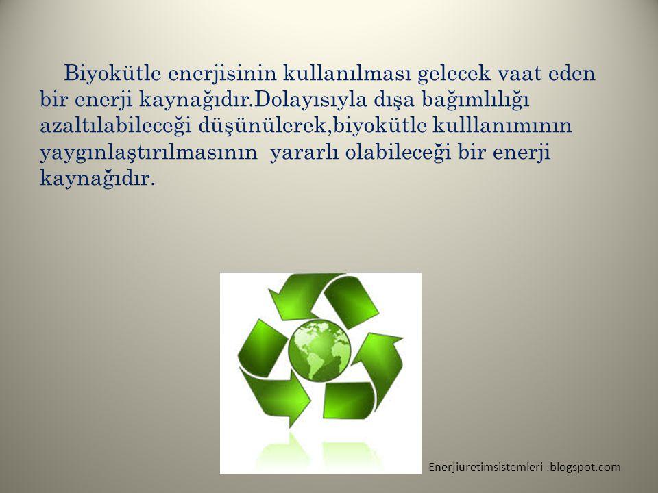 Biyokütle enerjisinin kullanılması gelecek vaat eden bir enerji kaynağıdır.Dolayısıyla dışa bağımlılığı azaltılabileceği düşünülerek,biyokütle kulllan