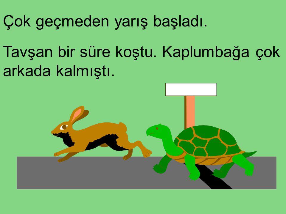 Çok geçmeden yarış başladı. Tavşan bir süre koştu. Kaplumbağa çok arkada kalmıştı.