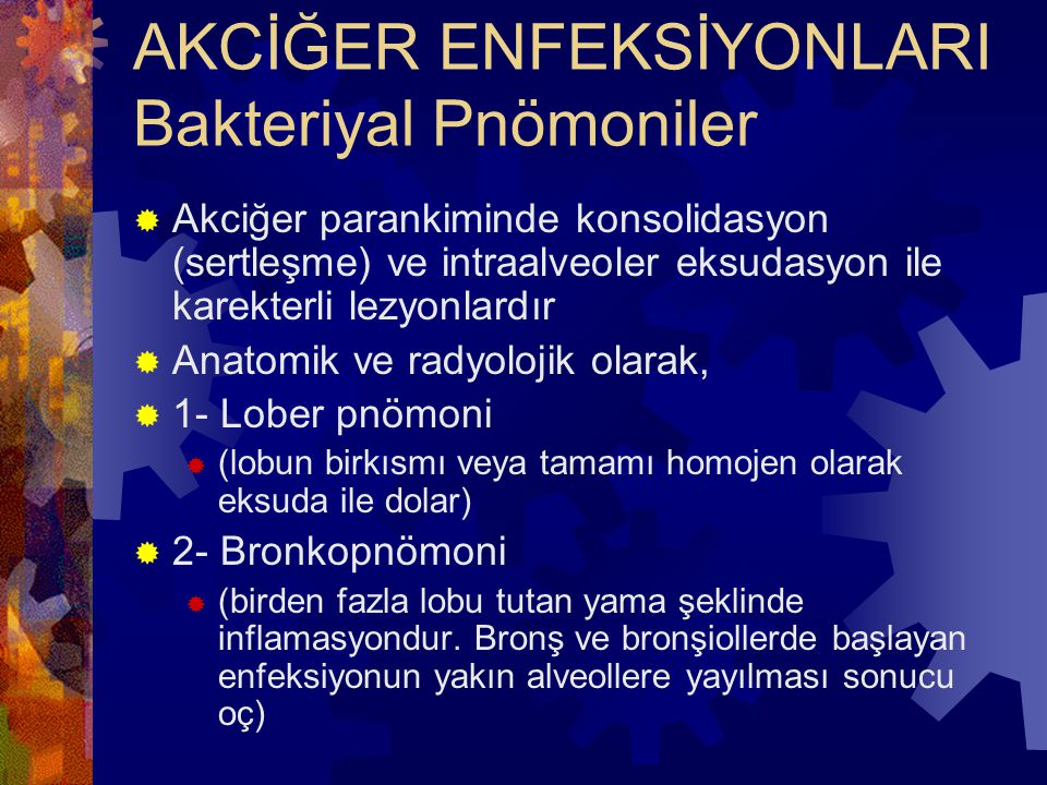 AKCİĞER ENFEKSİYONLARI Bakteriyal Pnömoniler  Akciğer parankiminde konsolidasyon (sertleşme) ve intraalveoler eksudasyon ile karekterli lezyonlardır  Anatomik ve radyolojik olarak,  1- Lober pnömoni  (lobun birkısmı veya tamamı homojen olarak eksuda ile dolar)  2- Bronkopnömoni  (birden fazla lobu tutan yama şeklinde inflamasyondur.