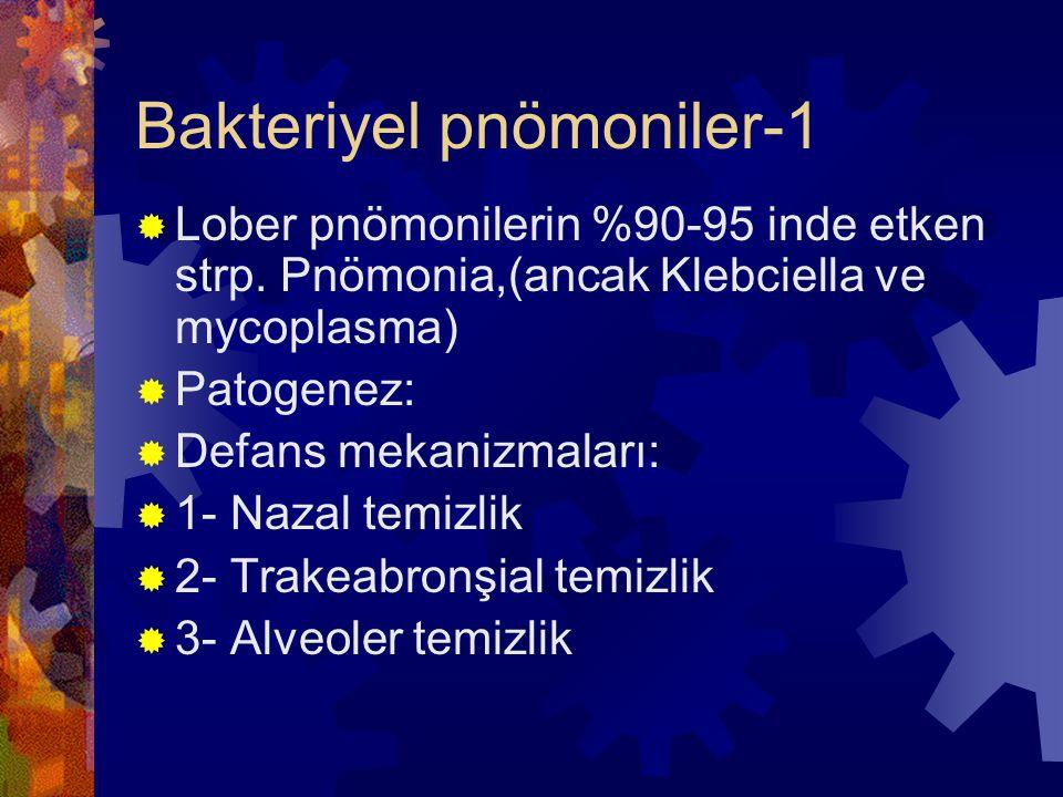 Bakteriyel pnömoniler-1  Lober pnömonilerin %90-95 inde etken strp.