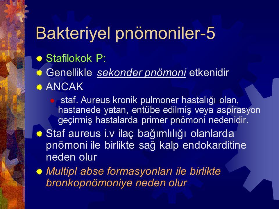 Bakteriyel pnömoniler-5  Stafilokok P:  Genellikle sekonder pnömoni etkenidir  ANCAK  staf.