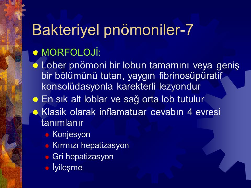 Bakteriyel pnömoniler-7  MORFOLOJİ:  Lober pnömoni bir lobun tamamını veya geniş bir bölümünü tutan, yaygın fibrinosüpüratif konsolüdasyonla karekterli lezyondur  En sık alt loblar ve sağ orta lob tutulur  Klasik olarak inflamatuar cevabın 4 evresi tanımlanır  Konjesyon  Kırmızı hepatizasyon  Gri hepatizasyon  İyileşme