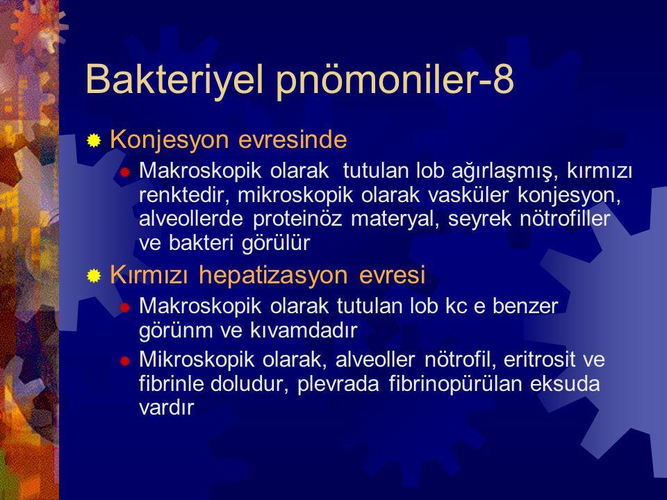 Bakteriyel pnömoniler-8  Konjesyon evresinde  Makroskopik olarak tutulan lob ağırlaşmış, kırmızı renktedir, mikroskopik olarak vasküler konjesyon, alveollerde proteinöz materyal, seyrek nötrofiller ve bakteri görülür  Kırmızı hepatizasyon evresi  Makroskopik olarak tutulan lob kc e benzer görünm ve kıvamdadır  Mikroskopik olarak, alveoller nötrofil, eritrosit ve fibrinle doludur, plevrada fibrinopürülan eksuda vardır