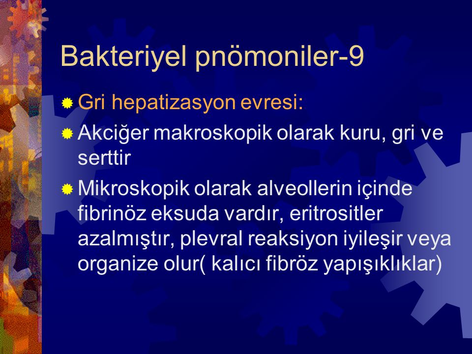 Bakteriyel pnömoniler-9  Gri hepatizasyon evresi:  Akciğer makroskopik olarak kuru, gri ve serttir  Mikroskopik olarak alveollerin içinde fibrinöz eksuda vardır, eritrositler azalmıştır, plevral reaksiyon iyileşir veya organize olur( kalıcı fibröz yapışıklıklar)