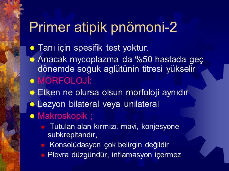 Primer atipik pnömoni-2  Tanı için spesifik test yoktur.