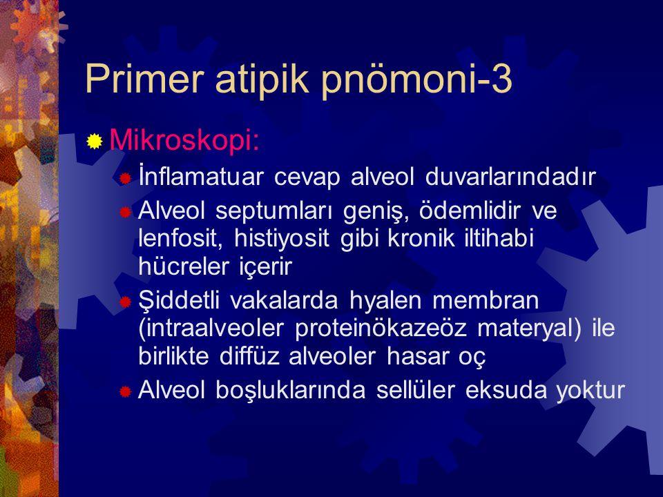 Primer atipik pnömoni-3  Mikroskopi:  İnflamatuar cevap alveol duvarlarındadır  Alveol septumları geniş, ödemlidir ve lenfosit, histiyosit gibi kronik iltihabi hücreler içerir  Şiddetli vakalarda hyalen membran (intraalveoler proteinökazeöz materyal) ile birlikte diffüz alveoler hasar oç  Alveol boşluklarında sellüler eksuda yoktur