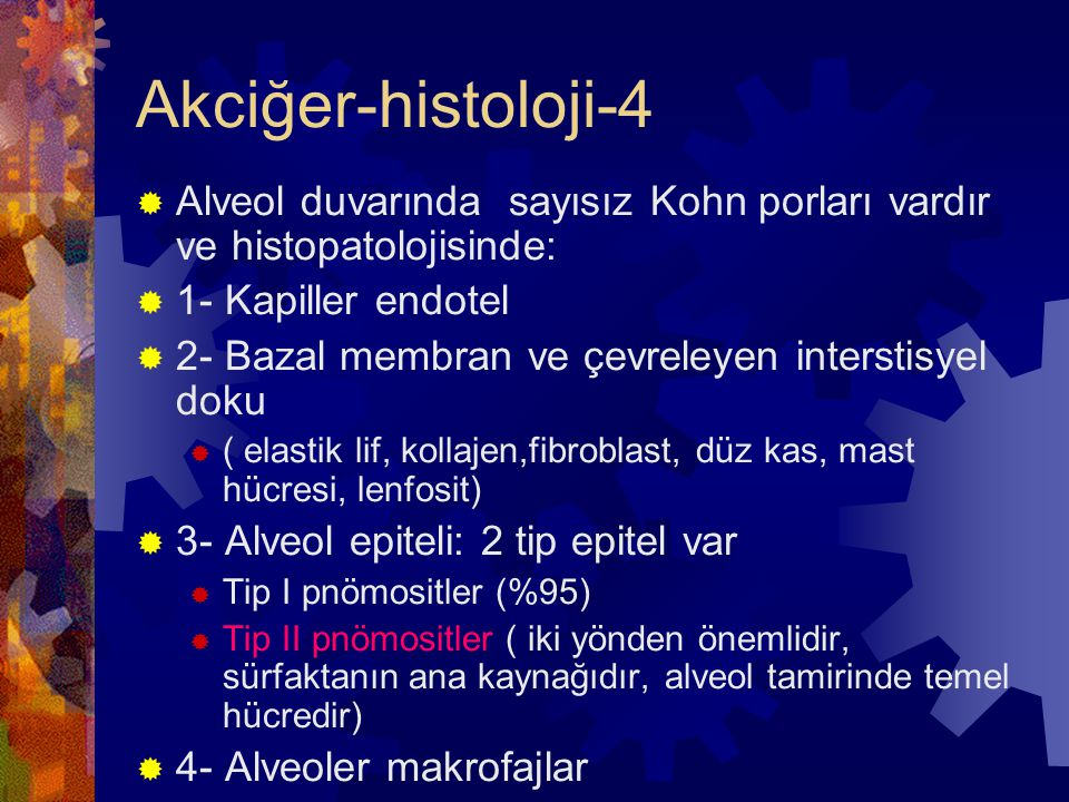 Primer Atipik Pnömoniler  Etkenler:  Mycoplasma pneumoniae (Hastane dışı atipik pnöm.