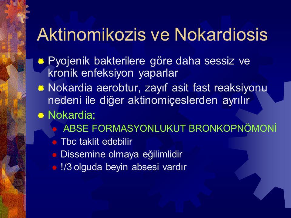 Aktinomikozis ve Nokardiosis  Pyojenik bakterilere göre daha sessiz ve kronik enfeksiyon yaparlar  Nokardia aerobtur, zayıf asit fast reaksiyonu nedeni ile diğer aktinomiçeslerden ayrılır  Nokardia;  ABSE FORMASYONLUKUT BRONKOPNÖMONİ  Tbc taklit edebilir  Dissemine olmaya eğilimlidir  !/3 olguda beyin absesi vardır
