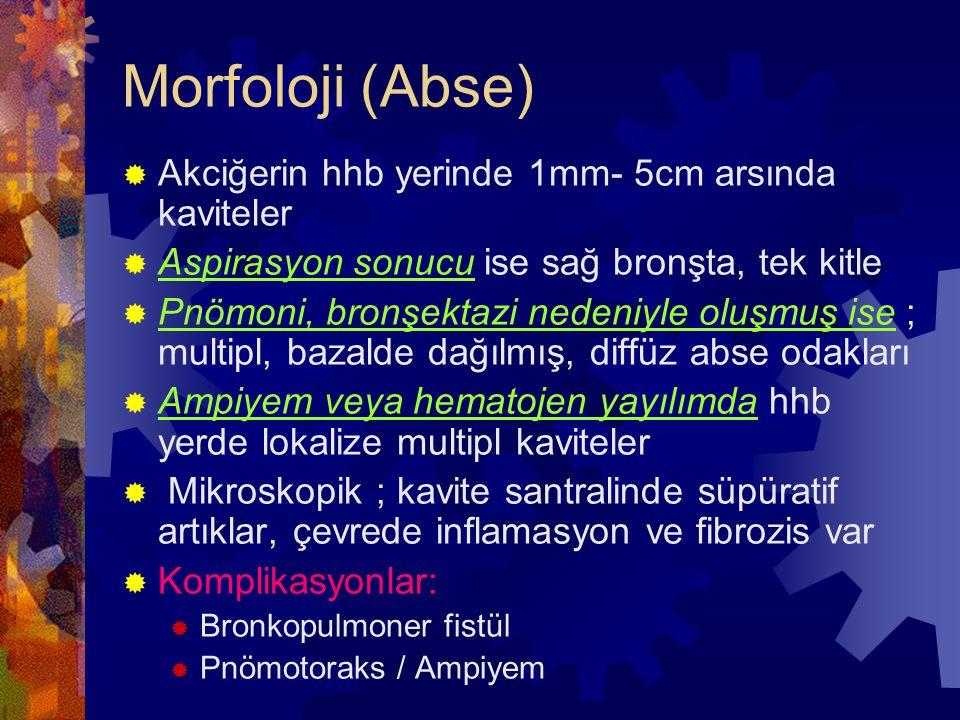 Morfoloji (Abse)  Akciğerin hhb yerinde 1mm- 5cm arsında kaviteler  Aspirasyon sonucu ise sağ bronşta, tek kitle  Pnömoni, bronşektazi nedeniyle oluşmuş ise ; multipl, bazalde dağılmış, diffüz abse odakları  Ampiyem veya hematojen yayılımda hhb yerde lokalize multipl kaviteler  Mikroskopik ; kavite santralinde süpüratif artıklar, çevrede inflamasyon ve fibrozis var  Komplikasyonlar:  Bronkopulmoner fistül  Pnömotoraks / Ampiyem