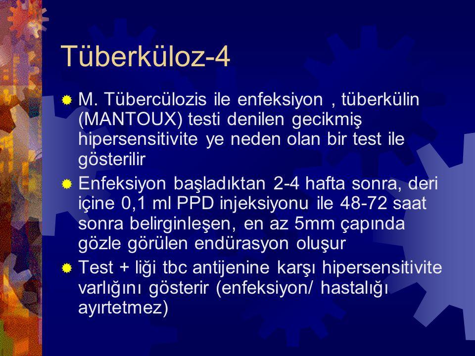 Tüberküloz-4  M.