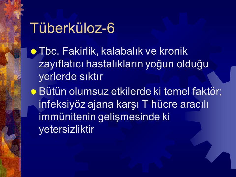 Tüberküloz-6  Tbc.