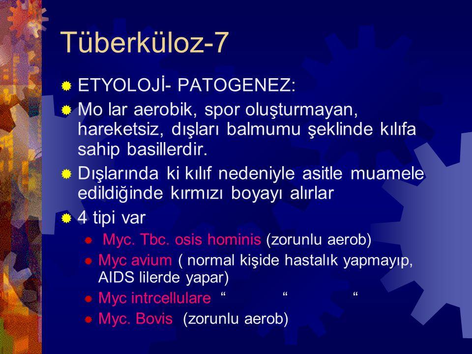 Tüberküloz-7  ETYOLOJİ- PATOGENEZ:  Mo lar aerobik, spor oluşturmayan, hareketsiz, dışları balmumu şeklinde kılıfa sahip basillerdir.