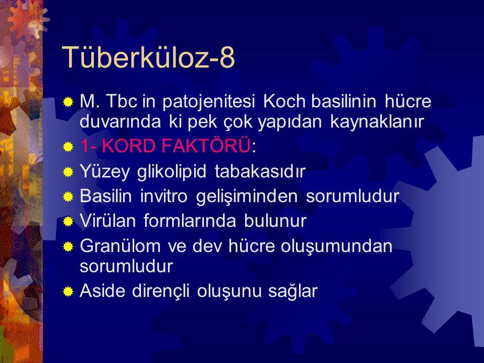 Tüberküloz-8  M.