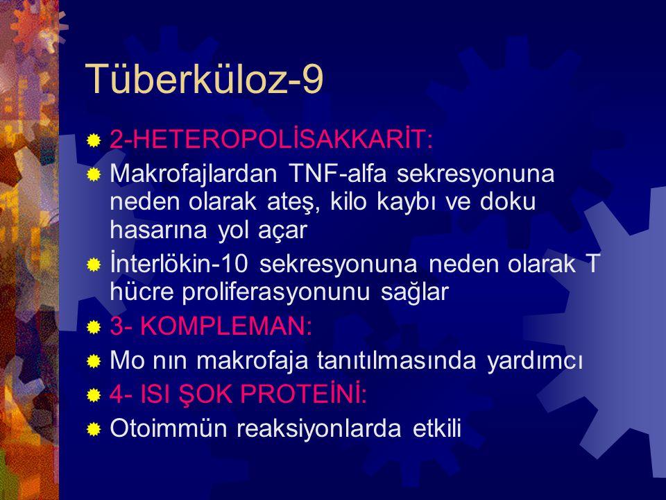 Tüberküloz-9  2-HETEROPOLİSAKKARİT:  Makrofajlardan TNF-alfa sekresyonuna neden olarak ateş, kilo kaybı ve doku hasarına yol açar  İnterlökin-10 sekresyonuna neden olarak T hücre proliferasyonunu sağlar  3- KOMPLEMAN:  Mo nın makrofaja tanıtılmasında yardımcı  4- ISI ŞOK PROTEİNİ:  Otoimmün reaksiyonlarda etkili