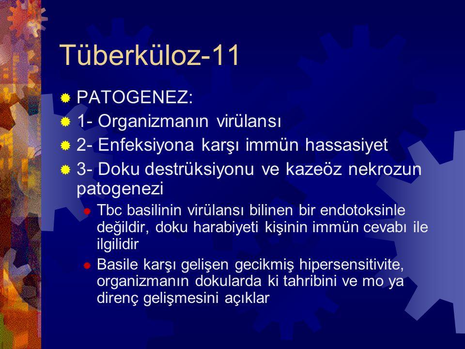 Tüberküloz-11  PATOGENEZ:  1- Organizmanın virülansı  2- Enfeksiyona karşı immün hassasiyet  3- Doku destrüksiyonu ve kazeöz nekrozun patogenezi  Tbc basilinin virülansı bilinen bir endotoksinle değildir, doku harabiyeti kişinin immün cevabı ile ilgilidir  Basile karşı gelişen gecikmiş hipersensitivite, organizmanın dokularda ki tahribini ve mo ya direnç gelişmesini açıklar