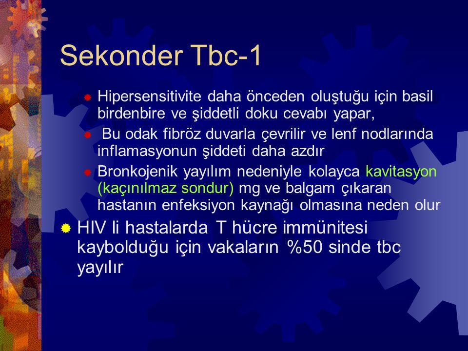 Sekonder Tbc-1  Hipersensitivite daha önceden oluştuğu için basil birdenbire ve şiddetli doku cevabı yapar,  Bu odak fibröz duvarla çevrilir ve lenf nodlarında inflamasyonun şiddeti daha azdır  Bronkojenik yayılım nedeniyle kolayca kavitasyon (kaçınılmaz sondur) mg ve balgam çıkaran hastanın enfeksiyon kaynağı olmasına neden olur  HIV li hastalarda T hücre immünitesi kaybolduğu için vakaların %50 sinde tbc yayılır