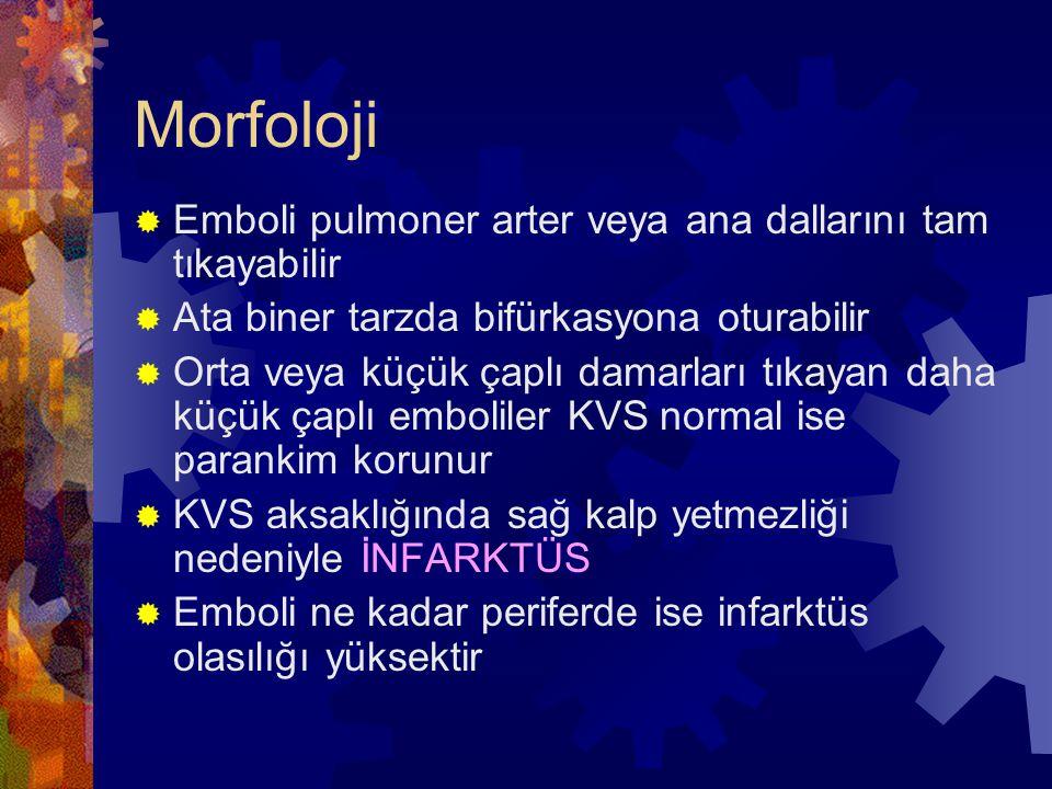 Morfoloji  Emboli pulmoner arter veya ana dallarını tam tıkayabilir  Ata biner tarzda bifürkasyona oturabilir  Orta veya küçük çaplı damarları tıkayan daha küçük çaplı emboliler KVS normal ise parankim korunur  KVS aksaklığında sağ kalp yetmezliği nedeniyle İNFARKTÜS  Emboli ne kadar periferde ise infarktüs olasılığı yüksektir