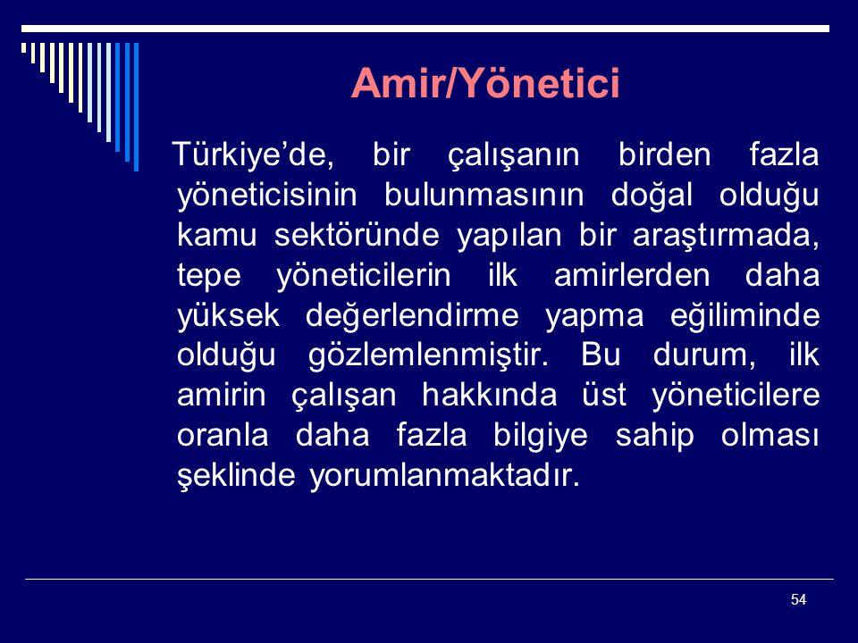 54 Amir/Yönetici Türkiye'de, bir çalışanın birden fazla yöneticisinin bulunmasının doğal olduğu kamu sektöründe yapılan bir araştırmada, tepe yönetici
