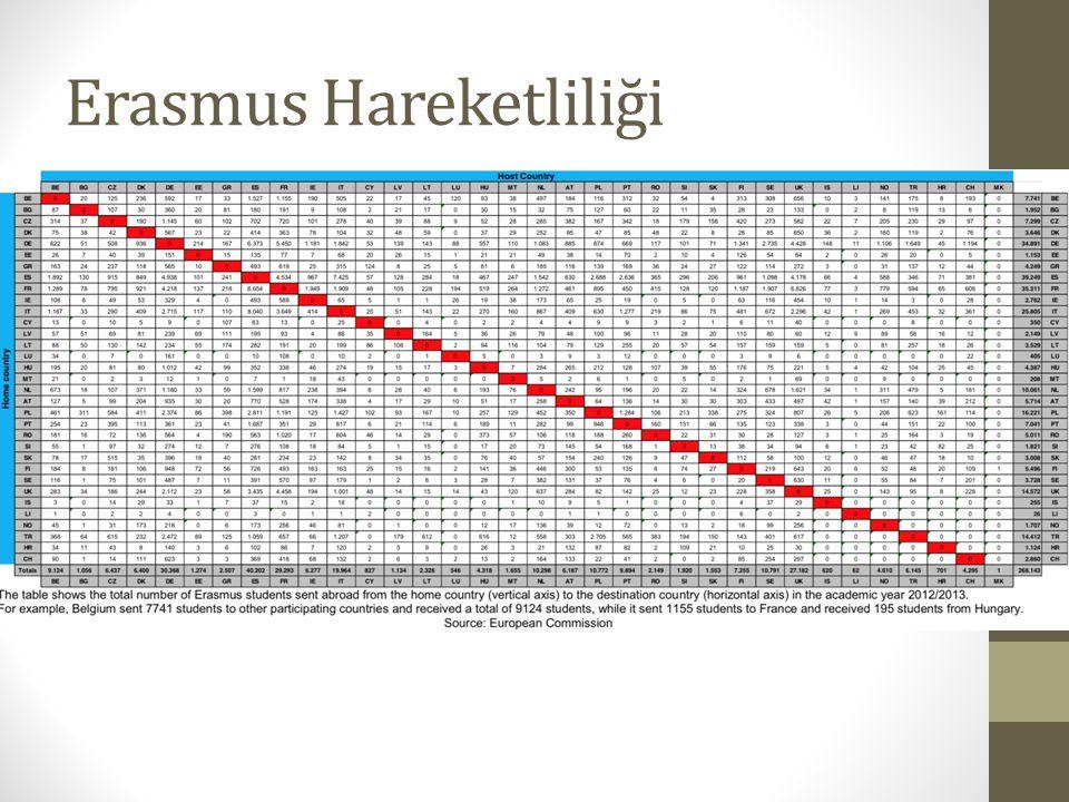 Erasmus Hareketliliği