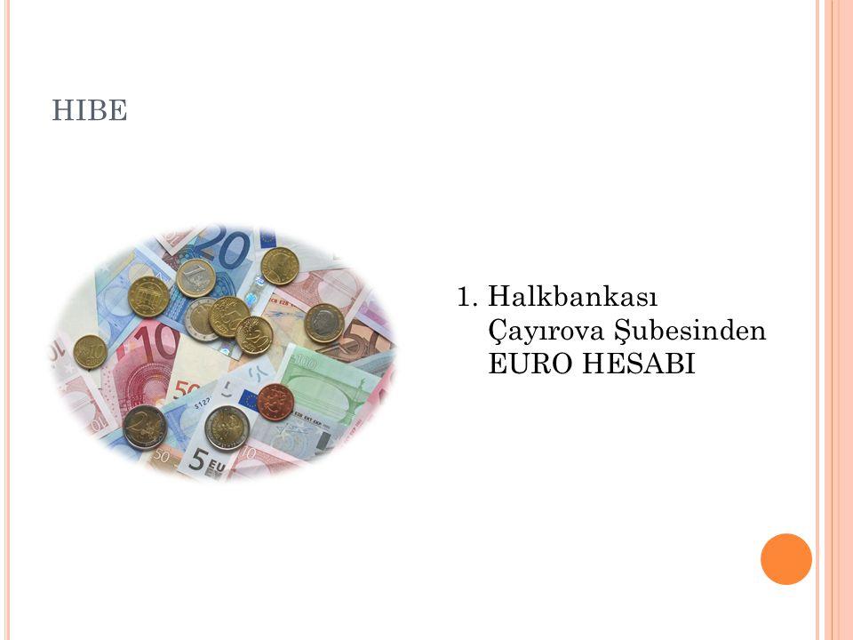 HIBE 1.Halkbankası Çayırova Şubesinden EURO HESABI