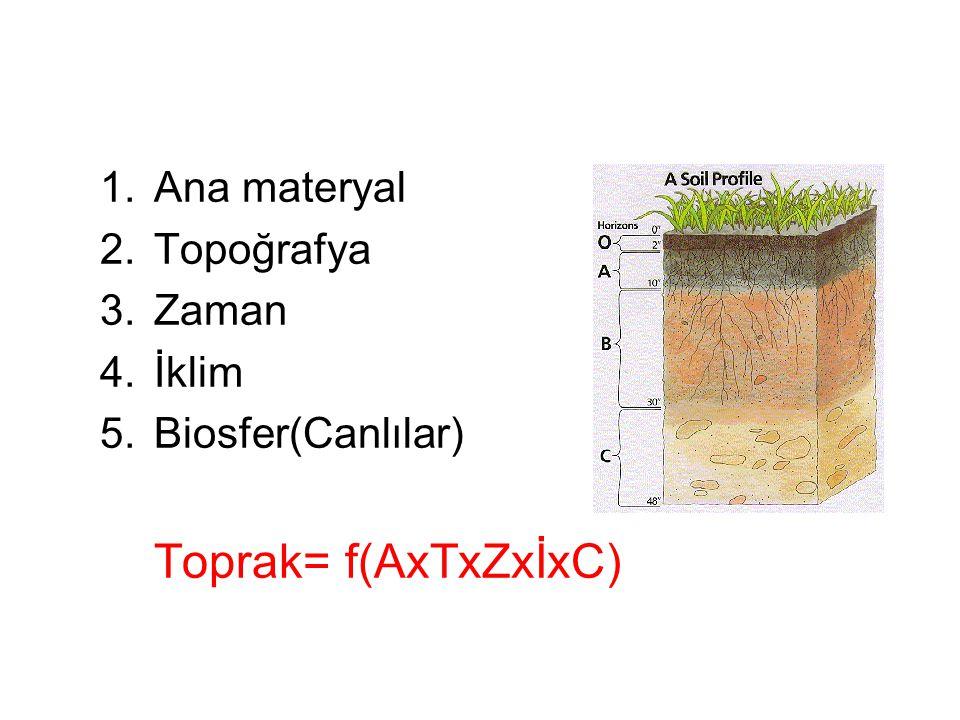 1.Ana materyal 2.Topoğrafya 3.Zaman 4.İklim 5.Biosfer(Canlılar) Toprak= f(AxTxZxİxC)
