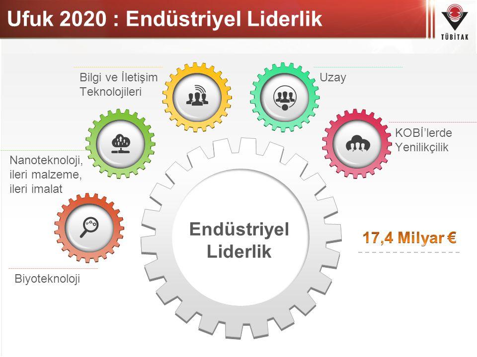Ufuk 2020 : Endüstriyel Liderlik Uzay KOBİ'lerde Yenilikçilik Biyoteknoloji Nanoteknoloji, ileri malzeme, ileri imalat Bilgi ve İletişim Teknolojileri