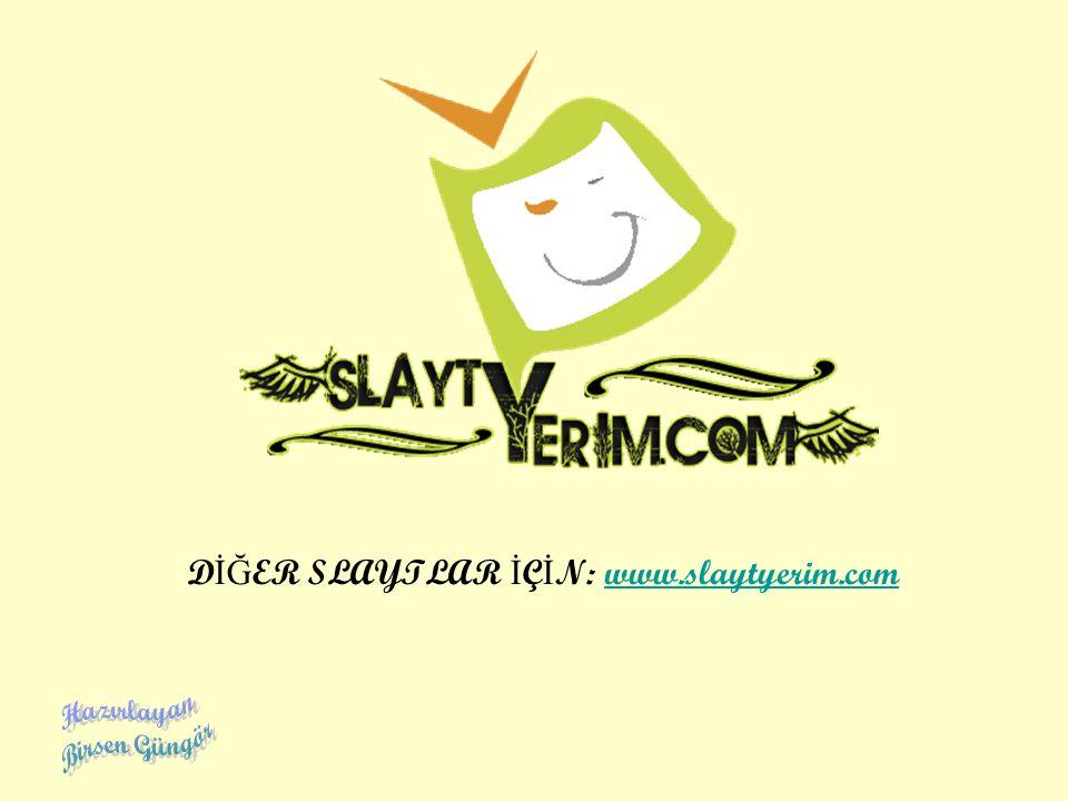 D İĞ ER SLAYTLAR İ Ç İ N: www.slaytyerim.com