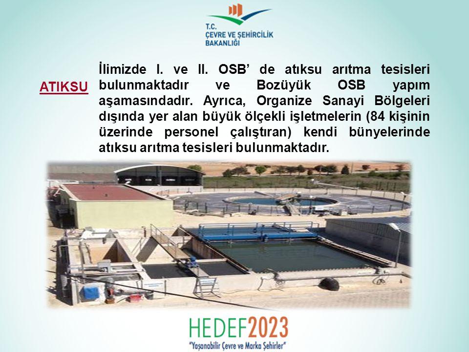 İlimizde I. ve II. OSB' de atıksu arıtma tesisleri bulunmaktadır ve Bozüyük OSB yapım aşamasındadır. Ayrıca, Organize Sanayi Bölgeleri dışında yer ala