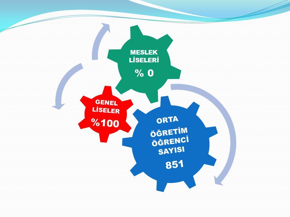 ORTA ÖĞRETİM ÖĞRENCİ SAYISI 851 GENEL LİSELER %100 MESLEK LİSELERİ % 0