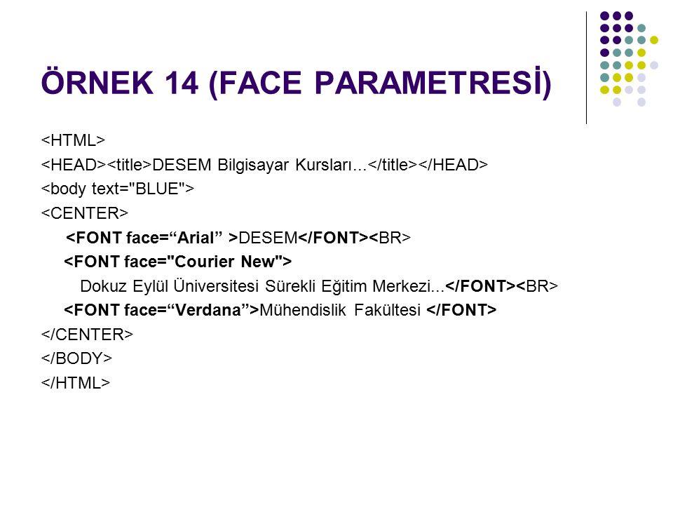 ÖRNEK 14 (FACE PARAMETRESİ) DESEM Bilgisayar Kursları... DESEM Dokuz Eylül Üniversitesi Sürekli Eğitim Merkezi... Mühendislik Fakültesi
