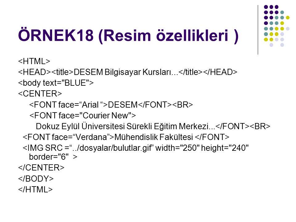 ÖRNEK18 (Resim özellikleri ) DESEM Bilgisayar Kursları... DESEM Dokuz Eylül Üniversitesi Sürekli Eğitim Merkezi... Mühendislik Fakültesi