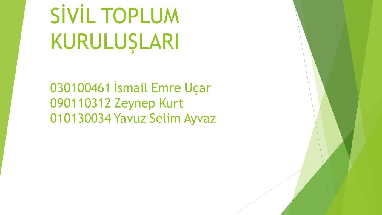 Kaynaklar  http://www.wwf.org.tr/ne_yapiyoruz/doga_koruma/ http://www.wwf.org.tr/ne_yapiyoruz/doga_koruma/  http://www.tepav.org.tr/upload/files/haber/1281515691- 4.Turkiye_Tabiati_Koruma_Dernegi.pdf http://www.tepav.org.tr/upload/files/haber/1281515691- 4.Turkiye_Tabiati_Koruma_Dernegi.pdf  http://www.temev.org.tr/site/dundenbugunee?start=1 http://www.temev.org.tr/site/dundenbugunee?start=1  http://www3.tema.org.tr/Sayfalar/Hakkimizda/AmacVeHedefler.html http://www3.tema.org.tr/Sayfalar/Hakkimizda/AmacVeHedefler.html  http://www.suvakfi.org.tr/duzey1.asp?id=faaliyetler http://www.suvakfi.org.tr/duzey1.asp?id=faaliyetler  http://www.ssder.org.tr/index_tr.asp?id=273 http://www.ssder.org.tr/index_tr.asp?id=273